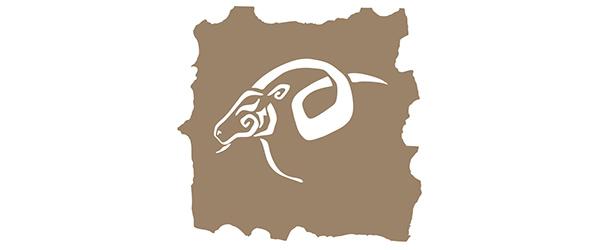Horoscope Capricorne 2016