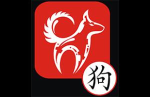 Horoscope chinois 2016 du Chien