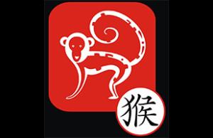 Horoscope chinois 2016 du Singe